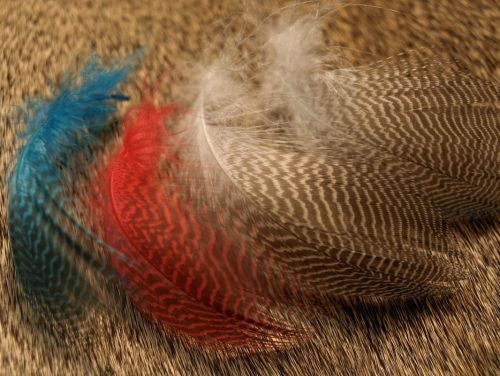Nature's Spirit Gadwell Flank Feathers