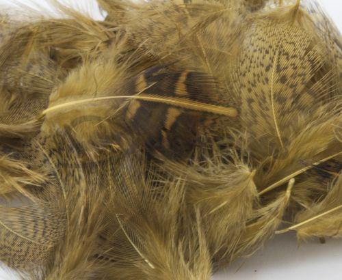 Nature's Spirit Premium Partridge feathers