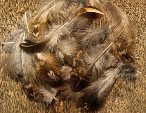 Natures Spirit Ruffed Grouse Feathers