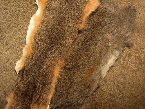 Nature's Spirit Squirrel Skins Natural & Dyed