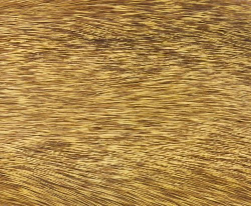 Nature's Spirit Stimulator Deer Hair