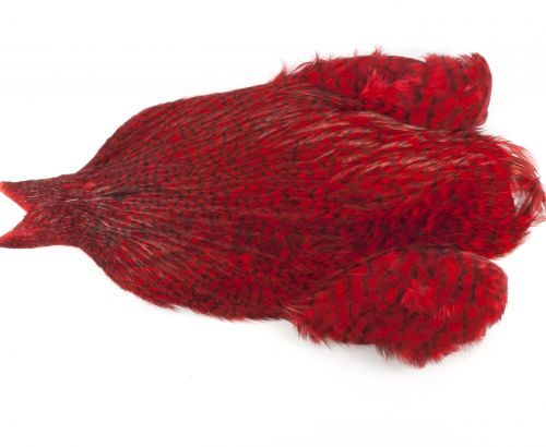 Whiting 4B Rooster Neck Cape
