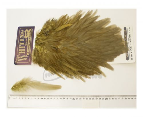 Whiting American Saddle Hackle Cape