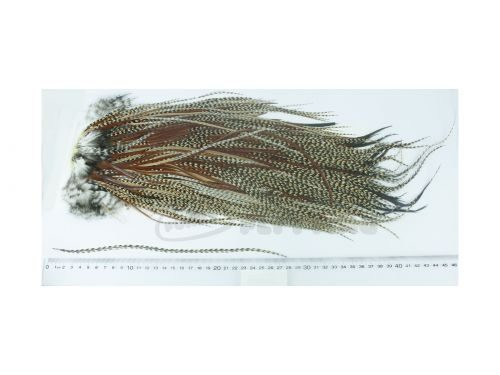 Whiting Eurohackle Saddle Cape