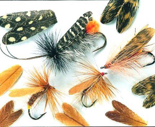 Veniard Natural Feather Caddis Wings